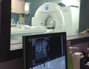ct scan analysis